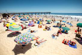 What Is Blue Flag Beach Coastal U0026 Beaches Nelson Mandela Bay Port Elizabeth