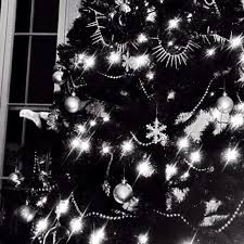 christmas christmas tree black picture inspirations bw