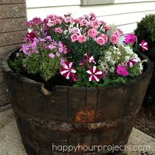 Half Barrel Planters by Best 25 Whiskey Barrel Planter Ideas Only On Pinterest