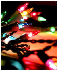 installer program the christmas light pros