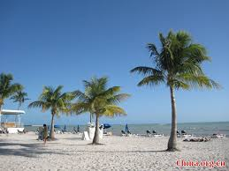 Florida scenery images Amazing scenery in miami u s cn jpg