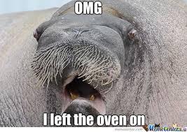 Walrus Meme - forgetful walrus by awkwardwalrus meme center