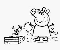 45 peppa pig images drawings pigs pig