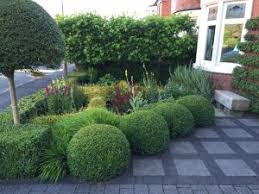 The Summer And Winter Garden - cipped box privet and lonicera form an evergreen winter structure