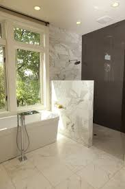 Bathroom Shower Wall Ideas Half Wall Ideas Bathroom Contemporary With Half Wall Shower Tile