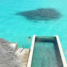 the maldives islands six senses laamu maldives the maldive