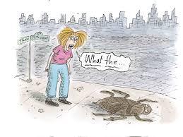 Sad Love Letters To Him Cartoonist Roz Chast Draws A U0027love Letter U0027 To New York City