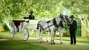 plantation wedding venues new orleans wedding venues southern oaks plantation