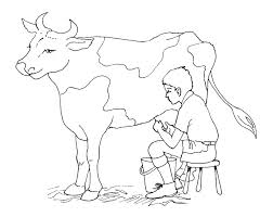 free cow coloring pages printable