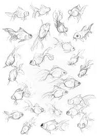 best 25 fish sketch ideas on pinterest koi art watercolor fish