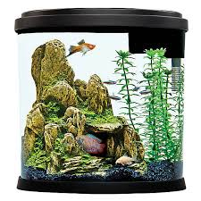 fish tank starter kits aquarium kits petsmart