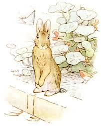 rabbit by beatrix potter the tale of rabbit beatrix potter bedtime stories