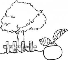 tree coloring pages crafts worksheets preschool toddler