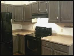 Rustoleum Cabinet Applying Rustoleum Cabinet Transformations Colors Loccie Better
