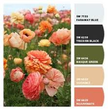 paint color sw 6874 ardent coral from sherwin williams girls room