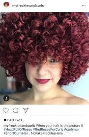 true hair curly hair vs curly hair lus brands