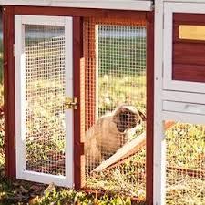 Rabbit Hutch Ramp Https M Media Amazon Com Images S Aplus Media Vc