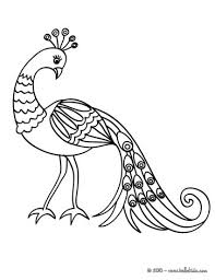 toco toucan coloring pages hellokids