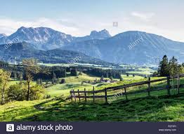 Farm Houses Bavarian Alps Farm Houses Rolling Green Meadows And Trees In