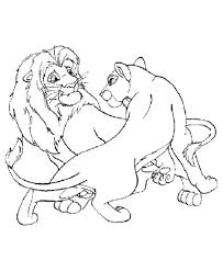 male female lions coloring lion coloring