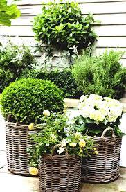 garden designs for small renovation ideas stunning and gardens