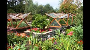 shade garden design layout stunning ideas image of perennial