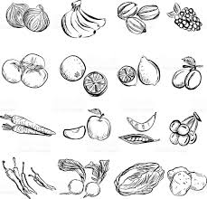 fruit and vegetable in charcoal sketch style stock vector art