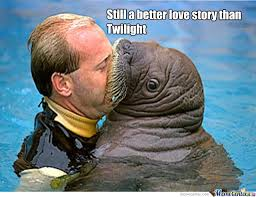 Still A Better Lovestory Than Twilight Meme - still a better love story than twilight by falcon6470 meme center