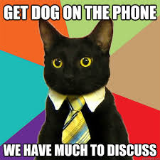 Dog On Phone Meme - get dog on the phone cat meme cat planet cat planet