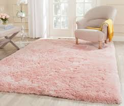 Rugs For Girls Ideas Pink Living Room Paint And Furniture Colors Inspiring Arafen