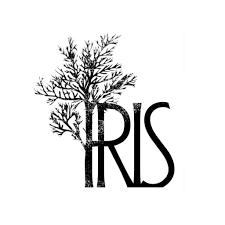 iris iris in desert twitter