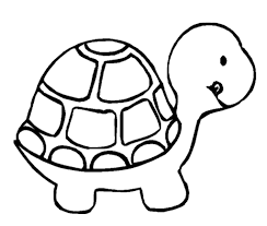 simple turtle drawing 7 pics of simple turtle coloring pages