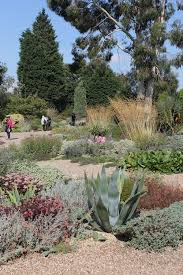 inspiration from beth chatto u0027s garden 9 tips for drought tolerant