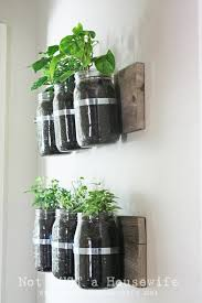 Indoor Herb Garden Ideas by If I Had Any Natural Light In My Apartment At All This Would Make