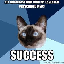 Success Cat Meme - the struggle is real chronic illness cat