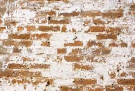 exposed brick how to expose brick in a brick row house home guides sf gate