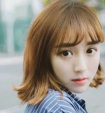 popular hair colour for korean 8 popular short hair strength shuabing according to a new height