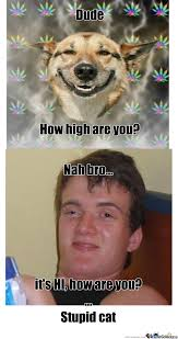 How High Are You Meme - you high bro by ironfist221 meme center
