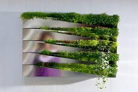 decorative indoor plants new media iii beautiful indoor plant decoration