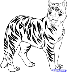 realistic lion coloring pages stylist design ideas liger coloring pages 10 tigers happy for