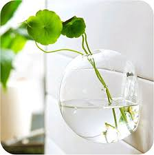 Wall Mounted Glass Flower Vases Aliexpress Com Buy Mkono Wall Mounted Glass Vase Wall Hanging