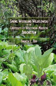 plants native to wisconsin uw botany store university of wisconsin madison