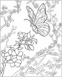 dover publications ch butterfly mandalas coloring