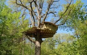 chambre d hote cabane dans les arbres cabane dans les arbres château de graville à vernou la celle seine