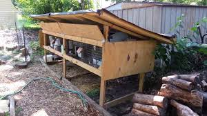 Rabbit Shack Hutch Flashback My Original Backyard Rabbit Hutch Setup Youtube