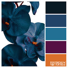 vibrant color palette combos take colors from the world to inspire