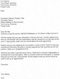 Example Resume Letter For Application An Unforgettable Trip Essay Pay For Professional Scholarship Essay