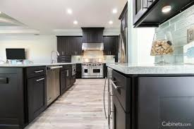 furniture remarkable procraft cabinets for your kitchen design