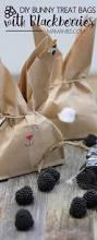 Pretzel Bags For Favors Best 25 Treat Bags Ideas On Pinterest Baby Shower Gift Bags