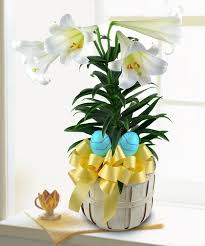 flower delivery columbus ohio blooming easter griffins floral deisgn columbus easter